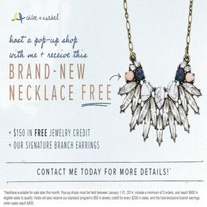Contact me to get this necklace for FREE! Host a Pop-Up Party and earn to a of free jewelry credit! www.chloeandisabel.com/boutique/thuy