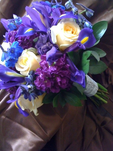 58 Best Images About Iris Wedding On Pinterest