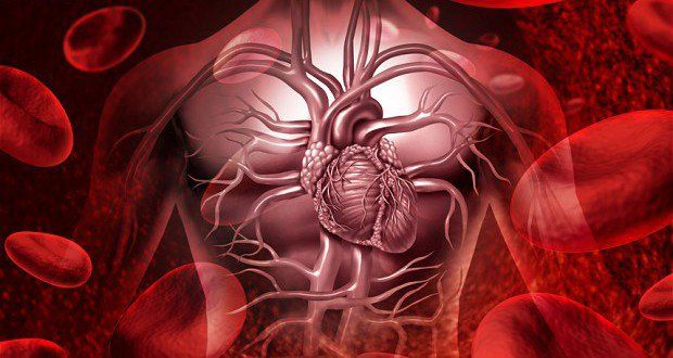 12 Possible Symptoms of a Heart Attack One Should Not Ignore