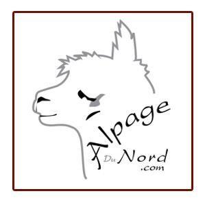 Accueil - Alpage du Nord
