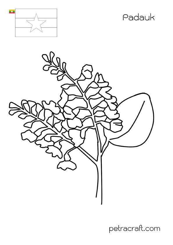 งานฝ ม อ Diy By Petracraft ภาพระบายส ดอกไม อาเซ ยน แพทเ ร นป กผ า งานฝ ม อ งานฝ ม อ Diy