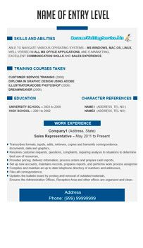 Marvelous Student Resume Format Example With Blue And Teal Accents
