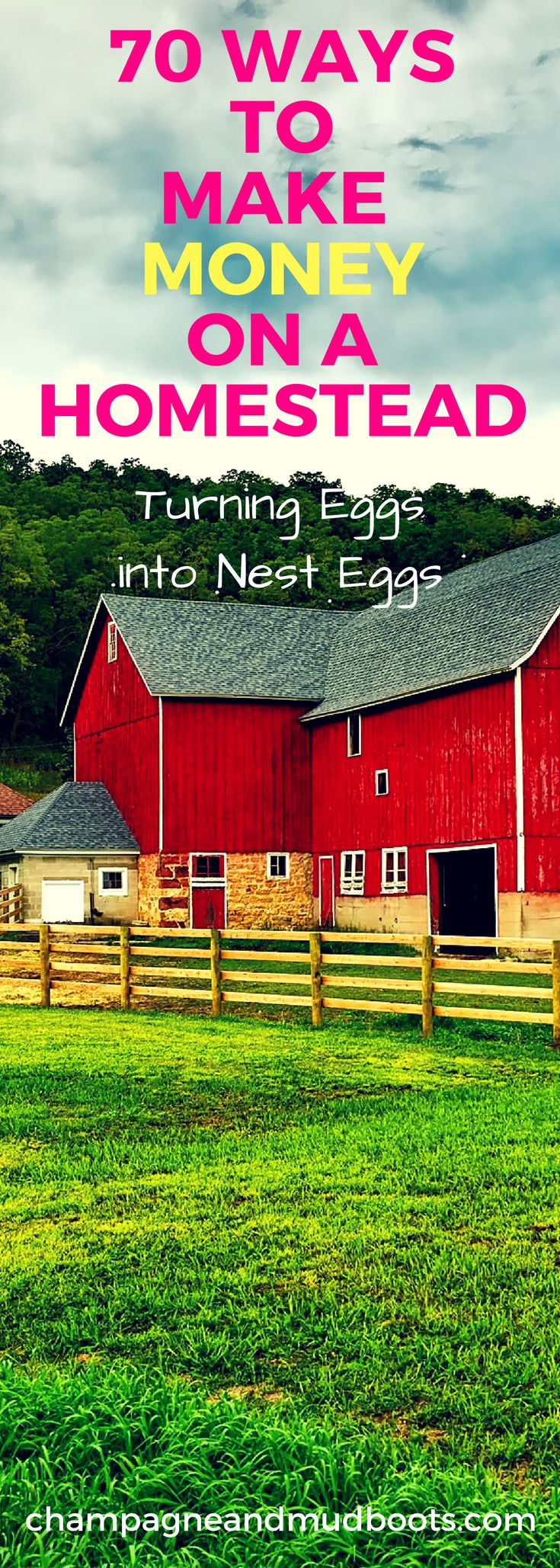 Ideas to generate an income and make money on a homestead so that it is a profitable life style choice even on a small homestead.