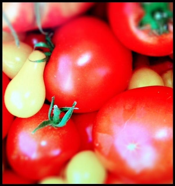Adelgaza 4 libras en tres días con la dieta del tomate. ¿Quieres ganar todo un ajuar nuevo para el verano? Participa aquí: http://www.mamaslatinas.com/about/getbikiniready.php