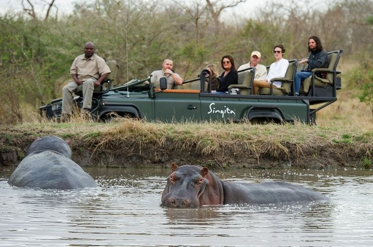 Daily game drives with professional guides and trackers provide the perfect opportunity to get up close to Africa's incredible animals, while evening drives reveal the elusive magic of nocturnal Africa.