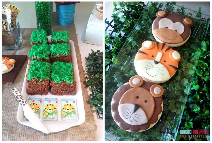 Awesome treats at a jungle birthday party! See more party planning ideas at CatchMyParty.com!