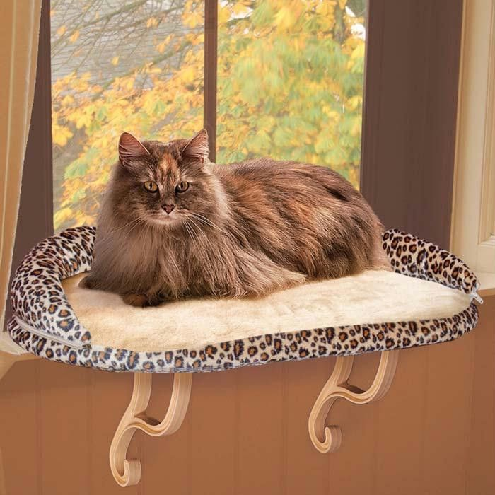 Pin by Whiskers N Beards on Pets Galore Cat window perch
