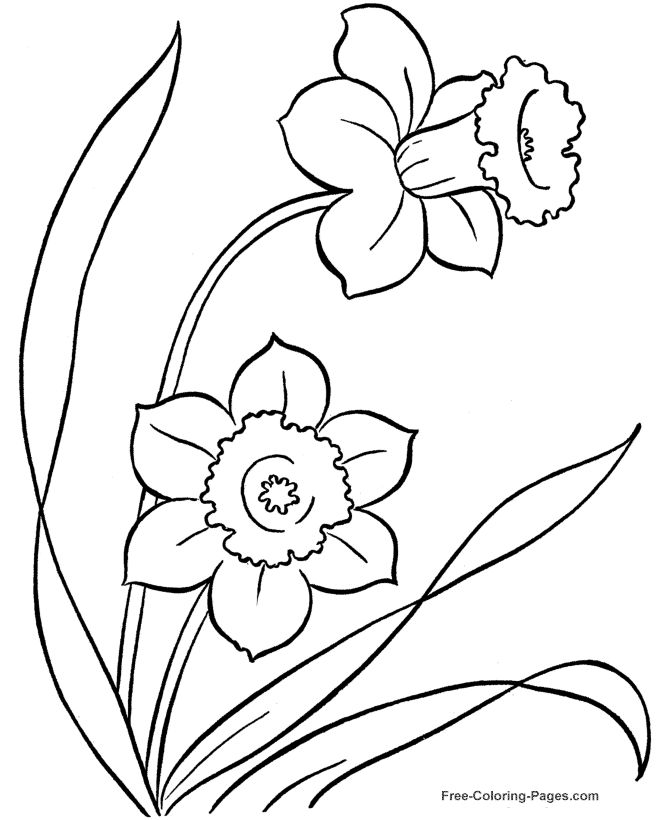 Many beautiful flower coloring pages to print and color