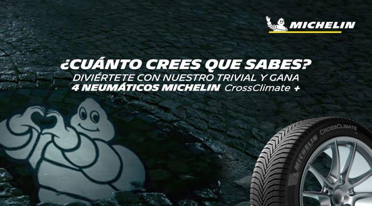 Gana 4 neumáticos MICHELIN CrossClimate +