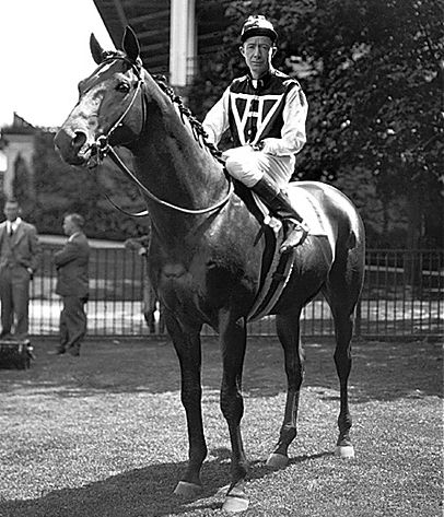 Seabiscuit became one of thoroughbred racings greatest legends. In six years of racing, he ran in 89 races, winning 33 of them, finishing on the board 61 times and setting 16 track records