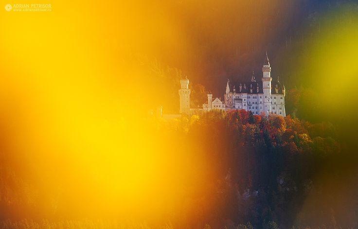 Neuschwanstein Castle - Neuschwanstein Castle, Bavaria- Germany. www.adrianpetrisor.ro