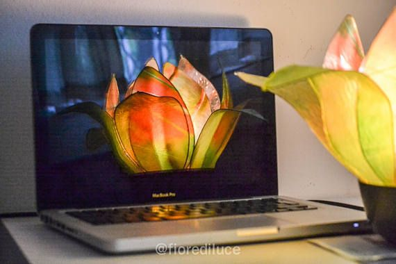 Questa lampada a forma di bocciolo di fiore, racchiude in se tutta lenergia vitale della natura, i suoi colori caldi e armoniosi ristorano davvero lanima, adatta quindi per quelle persone che sentono il bisogno di ricaricarsi e rigenerarsi.   È formata da 8 variopinti petali centrali che sono stati modellati utilizzando delle fotografie di Pier,  riproducenti fili derba, fiori e foglie, e da altri 6 petali in 2 differenti sfumature di verde.  La lampada è realizzata con filo di ferro, carta…