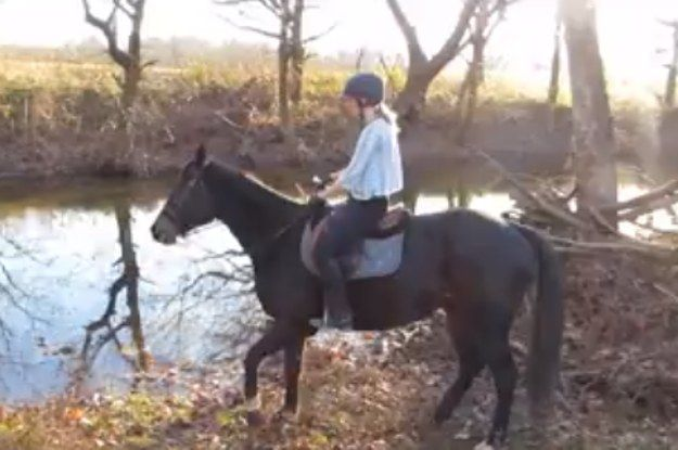 Anna Paterek was taking her horse Magic out for a ride, when they came across a river he was too nervous to step in. Anna splashed in it a bit to show Magic there was nothing to be afraid of. Then…magic happened. | Watch This Apprehensive Horse Get Over His Fear Of Water In The Most Adorable Way