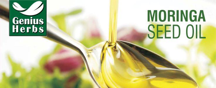 Moringa Leaf Powder, Moringa Capsules, Moringa Tablets, Wheat grass powder Manufacturers, Garcinia Extract Capsules Manufacturers