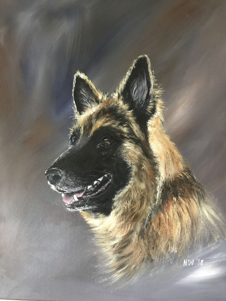 Xena - acrylic on canvas by Nicola Wilkinson