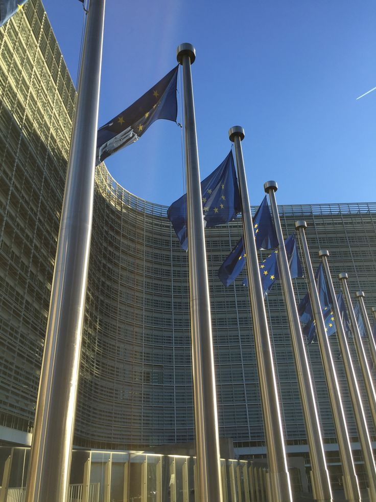 27.01.16: Berlaymont in wintersun