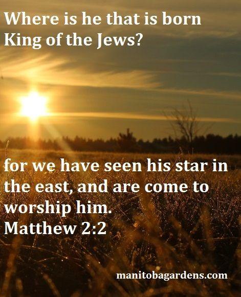 MANITOBA GARDENS: Scripture Picture Sunday # 18 Matthew 2:2
