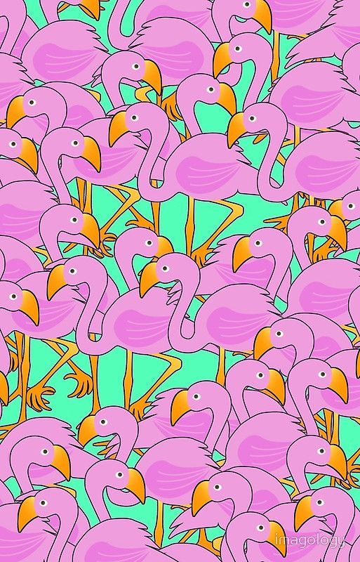 Fun Flamingos