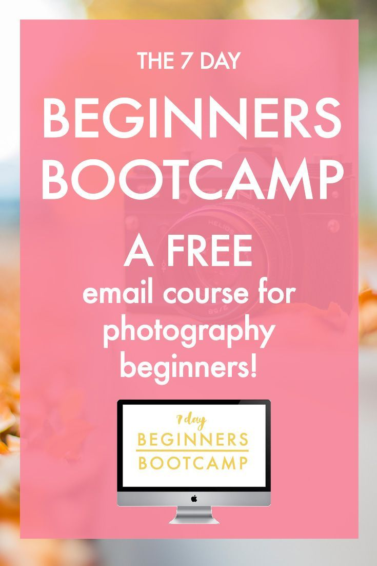 Beginners Photography Tutorial |  Photography for Beginners | Free Photography Course