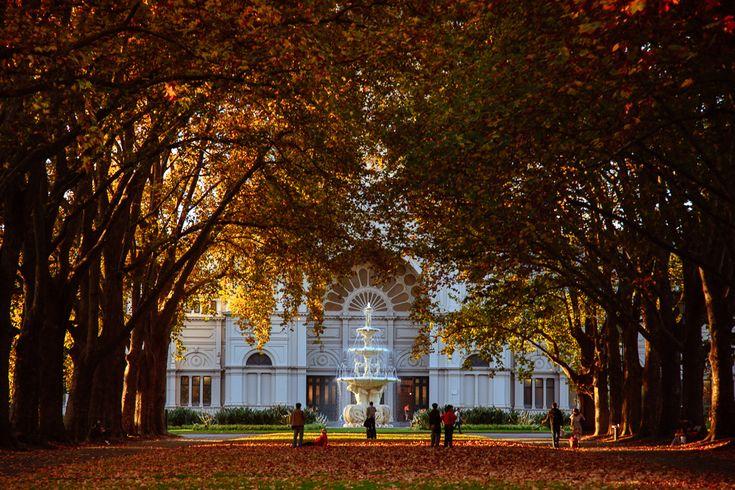 Exhibition Gardens in autumn - Melbourne Street