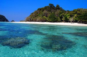 Koh Rok - one of the many islands of Koh Lanta Marine park, we snorkeled here, the fish and coral were amazing