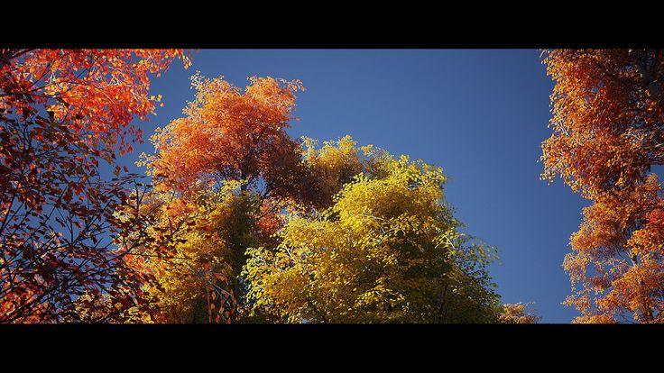 UE4 - SpeedTree | Flickr - Photo Sharing!