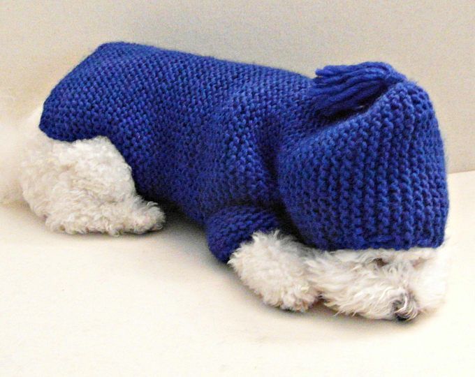 Azul real perro Chihuahua con capucha suéter XXS perro ropa botón perro suéter por BubaDog
