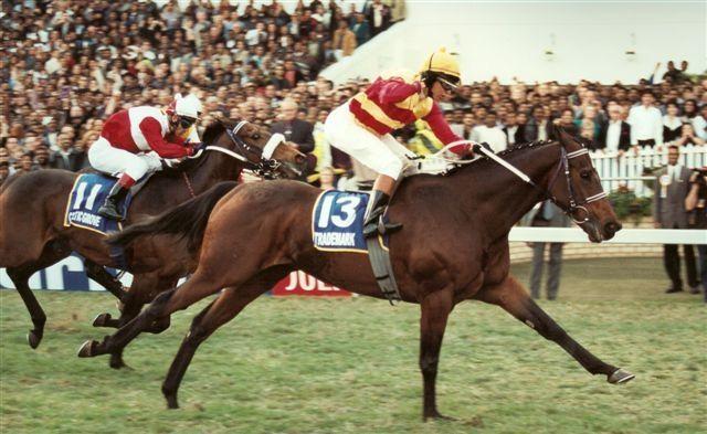 TRADEMARK b g 1996 GOLDMARK – POPULAR Won: Durban July (Gr.1) 2200m Won: Queen's Plate (Gr.1) 1600m Won: Cup Trial (Gr.3) 1800m Won: Winter Classic (L) 1800m Won: Winter Guineas (L) 1600m
