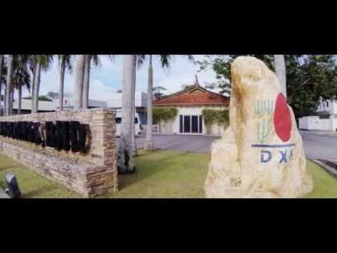Gyógyulj gombákkal! : Miért jó a DXN családjához tartozni?