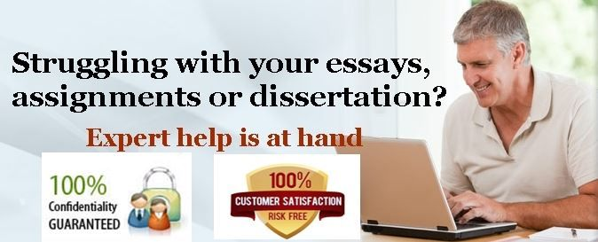 Custom academic writing sample essay