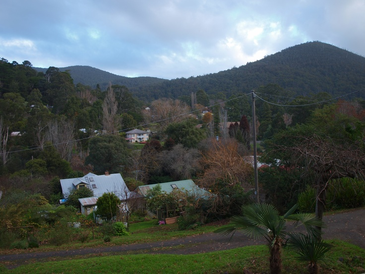 The view from the balcony across the valley. The Yarra River is a 2 minute walk away.