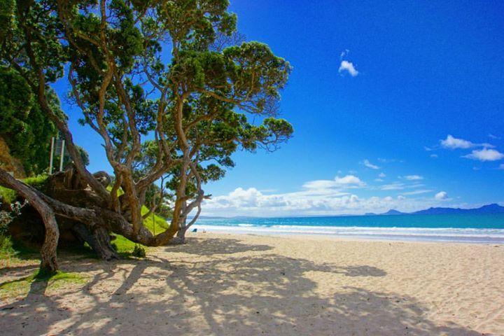 Langs Beach es una playa aislada solitaria. Es parte de Breams Bay y es bastante larga. Se encuentra justo en medio del camino entre los pueblos de Waipu y Mangawhai Heads. Aquí es donde decidí parar para almorzar en mi primer día de roadtrip. Una playa hermosa llena de aves en la que se siente una paz increíble. El oleaje en Langs Beach es bastante fuerte haciéndola una playa muy adecuada para surfear.    Langs Beach Northland New Zealand    Todas las fotos son tomadas por mí excepto en las…