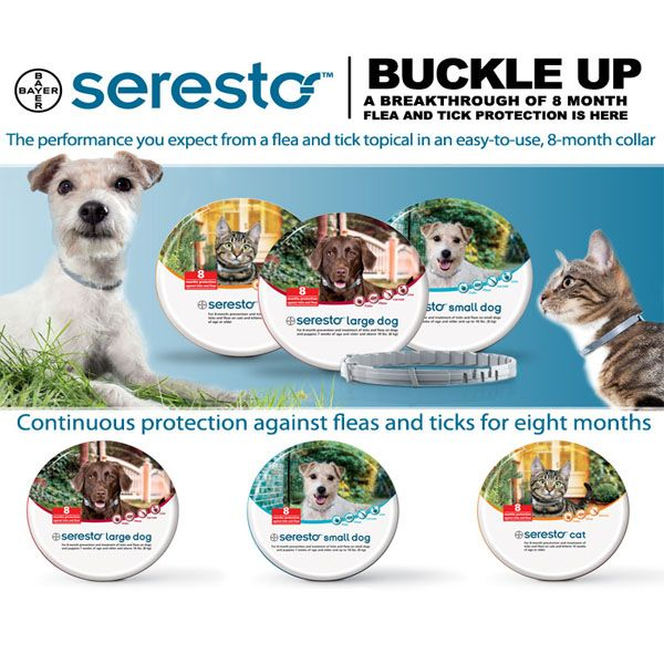 Seresto Tick & Flea Collars for Dogs & Cats - Up to 8 months protection Bayer Animal Health brings us Seresto tick and flea collars. Seresto collars are easy to use and uses state of the art technology to protect dogs and cats against both ticks and fleas for up to 8 months! It is available over the counter from most good veterinary practices and vet shops. The ... http://www.vet-portshepstone.co.za/seresto-tick-flea-collars-for-dogs-cats/