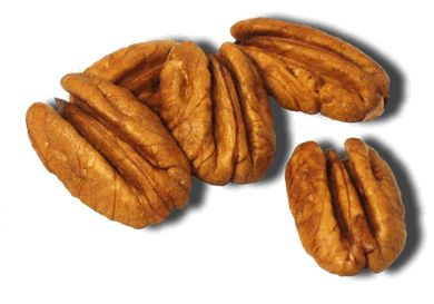 I love pecans!  After living in the South, I now use pecans as a substitute for every nut in any recipe.  They are especially good toasted then sprinkled on salad w/ greens, goat cheese, and berries.