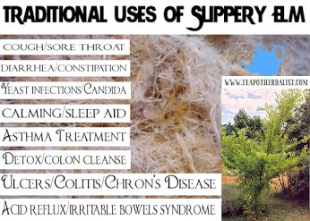 Slippery Elm Bark Benefits In herbal medicine a slippery elm bark powder is considered one of the best possible poultices for wounds, boils, ulcers, burns and reducing pain.  #slipperyelm  #herbs #remedies  YOUR HEALTH - Community - Google+