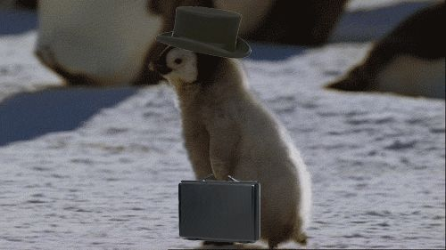 top hat..
