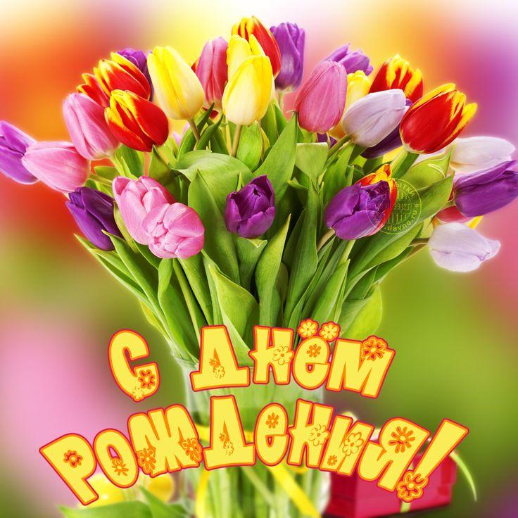 Открытки с днем рождения цветы яркие