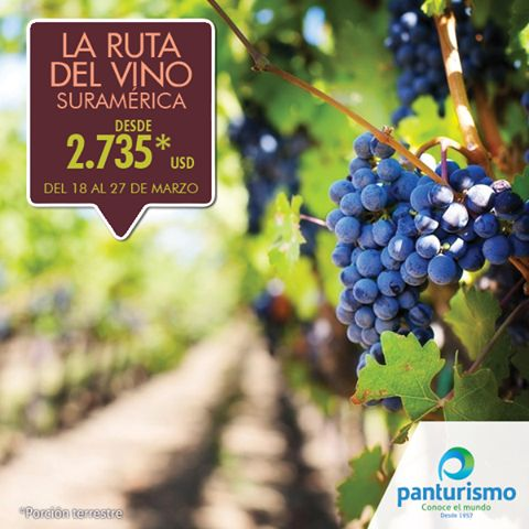 Un plan imperdible para los amantes de la buena mesa y los hermosos paisajes es La Ruta del Vino. Para más información llámanos en Cali al 668 2255, en Bogotá al 606 9779 o en nuestra página web www.panturismo.com