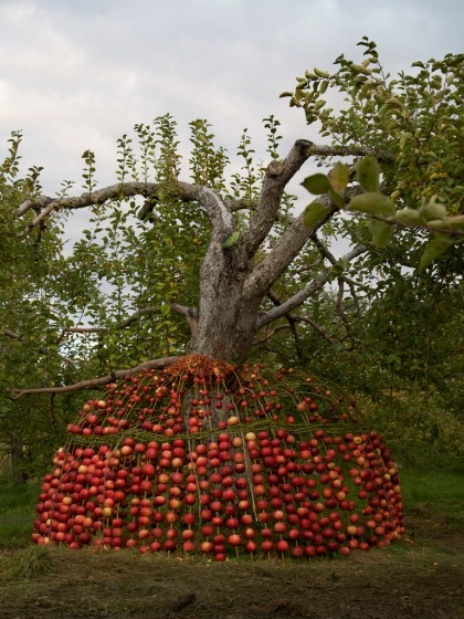 Pommes Maison was an installation created for the Land Art Mont-St-Hilaire festival in Québec from October 12th to the 16th 2011 by Nicole Dextras