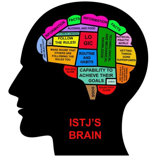 MBTI in Real Life. ISTJ's brain. Goodness...the spelling errors.