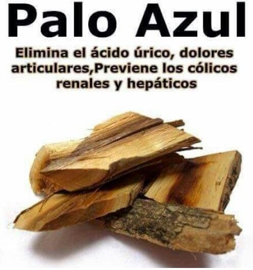 Palo Azul