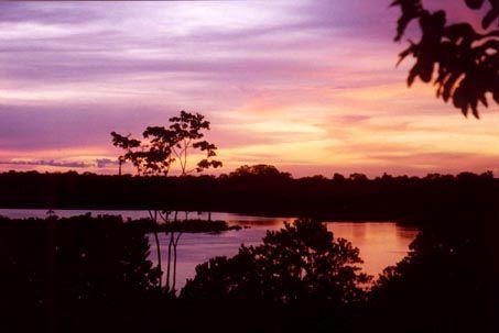atardecer - Amazonas
