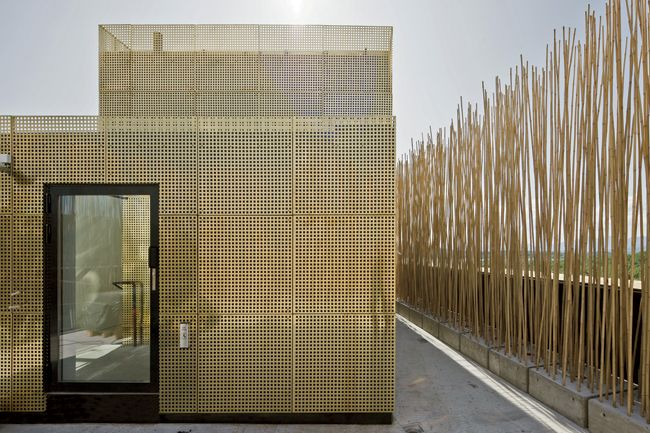 Knut Hamsun Center, Steven Holl