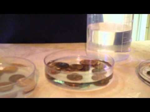 Dollar Store Science: The Penny Experiment - YouTube