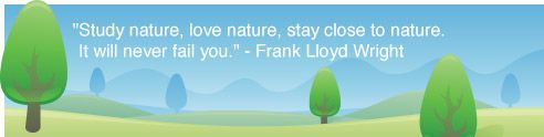 """""""Study nature, love nature, stay close to nature. It will never fail you."""" - Frank Llyod Wright"""