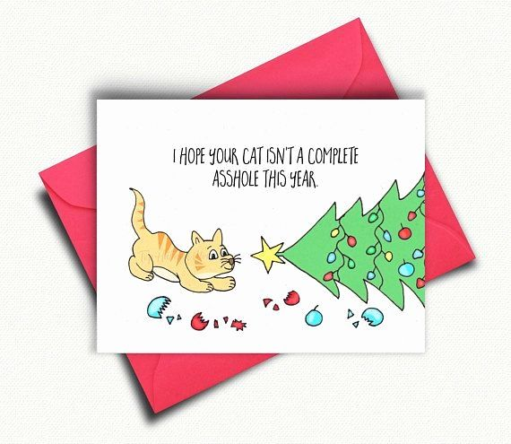 Google Funny Cat Christmas Cards Funny Holiday Cards Cat Christmas Cards