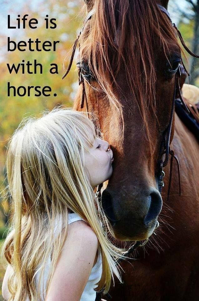 She has always loved horses, my earliest memories are of following her around the yard where she kept her horse.
