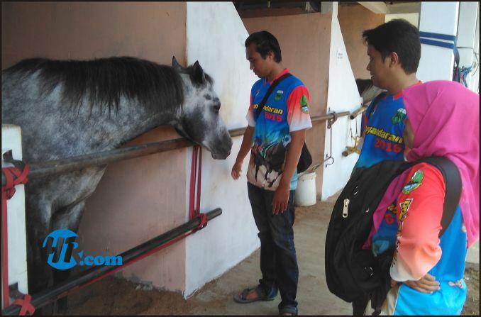 Kuda Peserta PON di Pangandaran Sudah Dipersiapkan Khusus