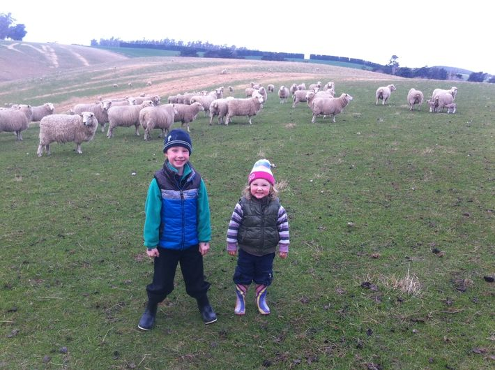 Kakanui is home to many sheep farms. Complete novices, we spent a day on a farm. Check out what we got up to in our blog:  http://www.thebusstop.co.nz/blog/our-kakanui-lambing-adventure