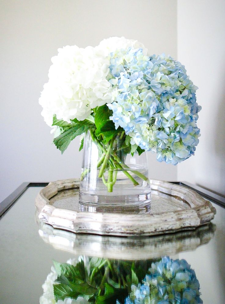 How To Use Hydrangeas Photos Tips And The Meaning Hydrangea Not Blooming Hydrangea Flower Arrangements Hollyhocks Flowers